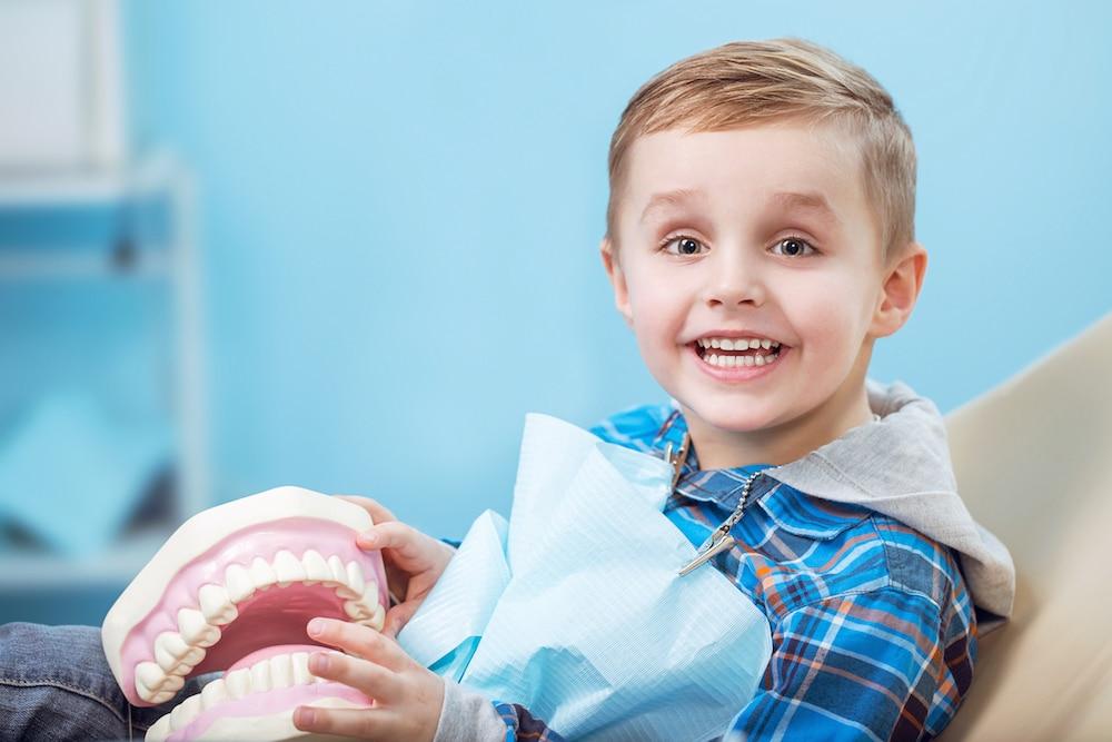 Head Orthodontics of Glen Ellyn k